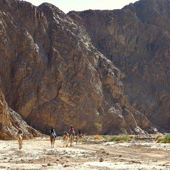 graniet-bergwoestijn Sinai DesertJoy