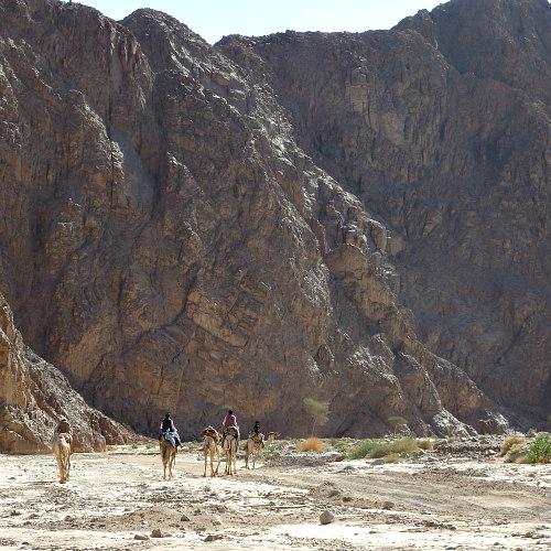 de onvergelijkbare Sinaiwoestijn DesertJoy