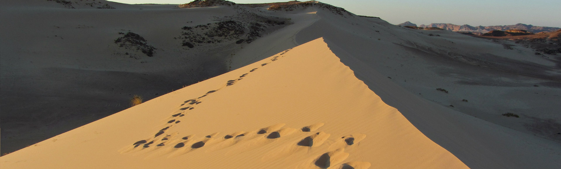 Sinaï Woestijn DesertJoy