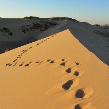 zandwoestijn Sinaï DesertJoy