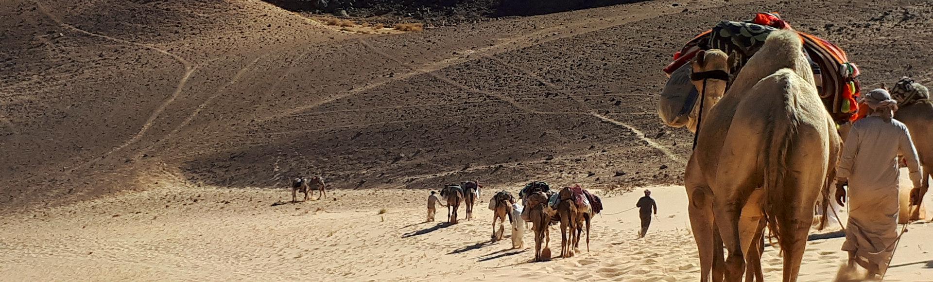 afdaling DesertJoy