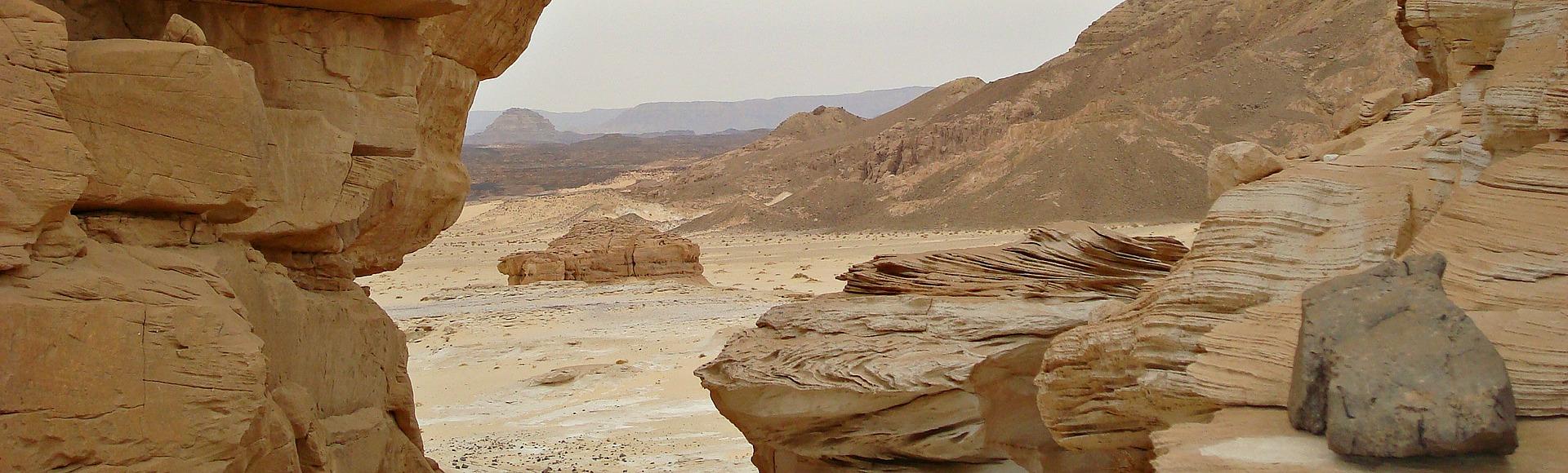 sinaiwoestijn desertjoy