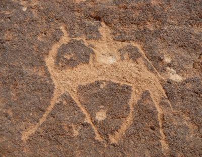 8-dgse Kerst en Oud & Nieuw in de Woestijn