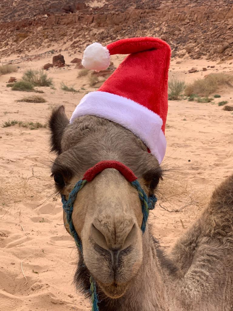 kerst en oud-en-nieuw in de Woestijn DesertJoy
