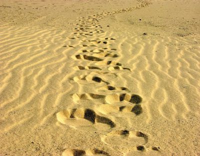7-dgse Woestijn-Kamelentocht
