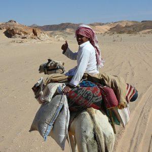 woestijn-kamelentocht DesertJoy